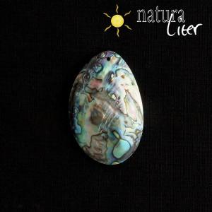 Perleťový přívěsek paua - velký 5 cm
